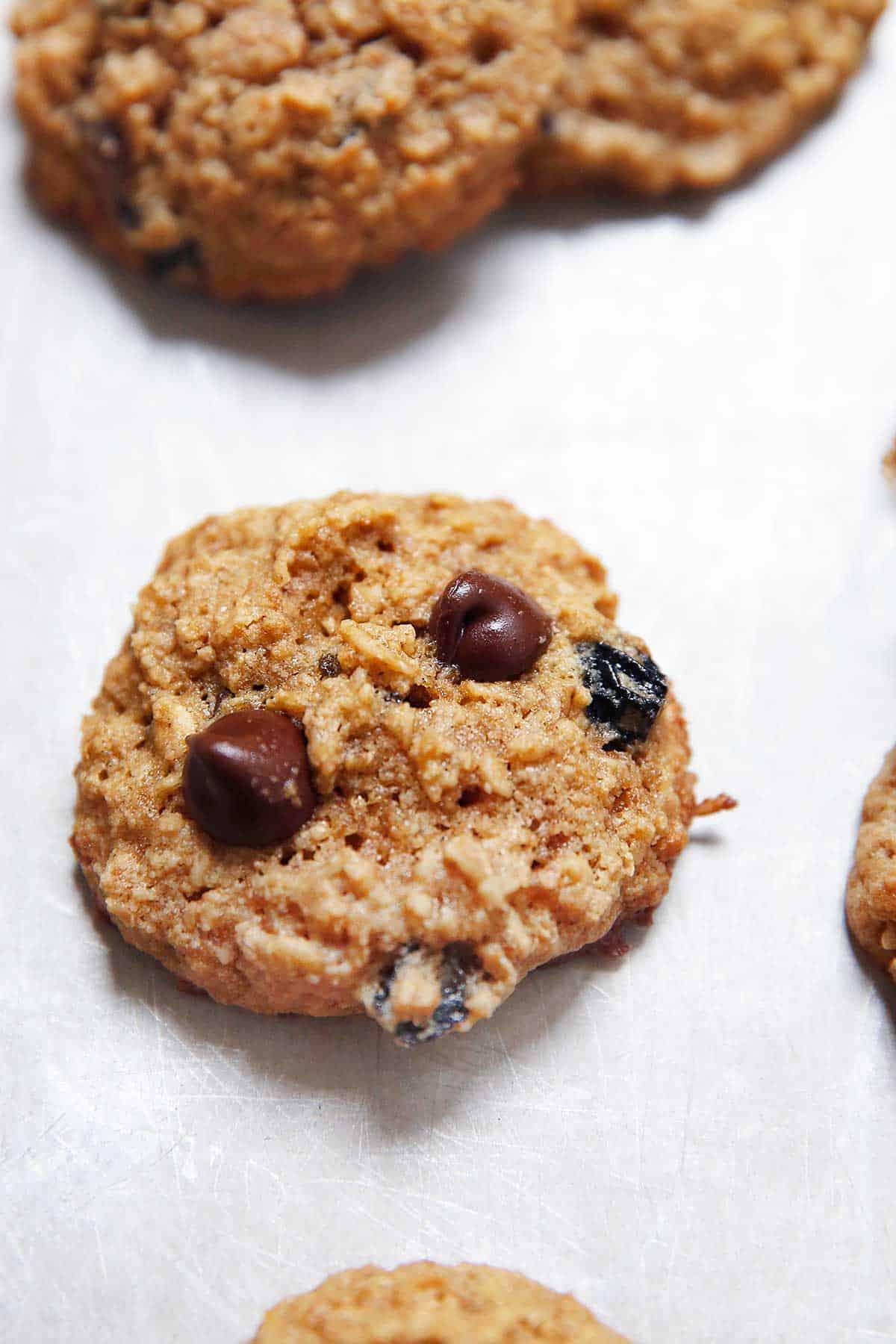 Gluten-Free Oatmeal Raisin Cookies | Lexi's Clean Kitchen