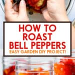 How to Roast Red Peppers Pinterest
