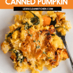 How to Use Leftover Caned Pumpkin Puree