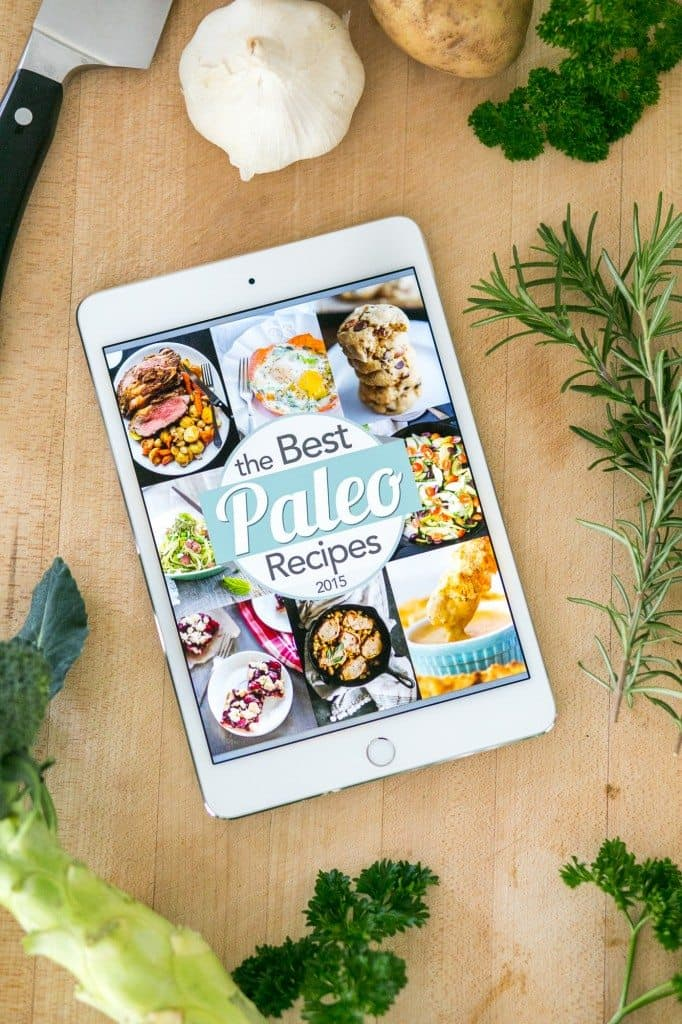 Best of Paleo Recipes 2015 eBook