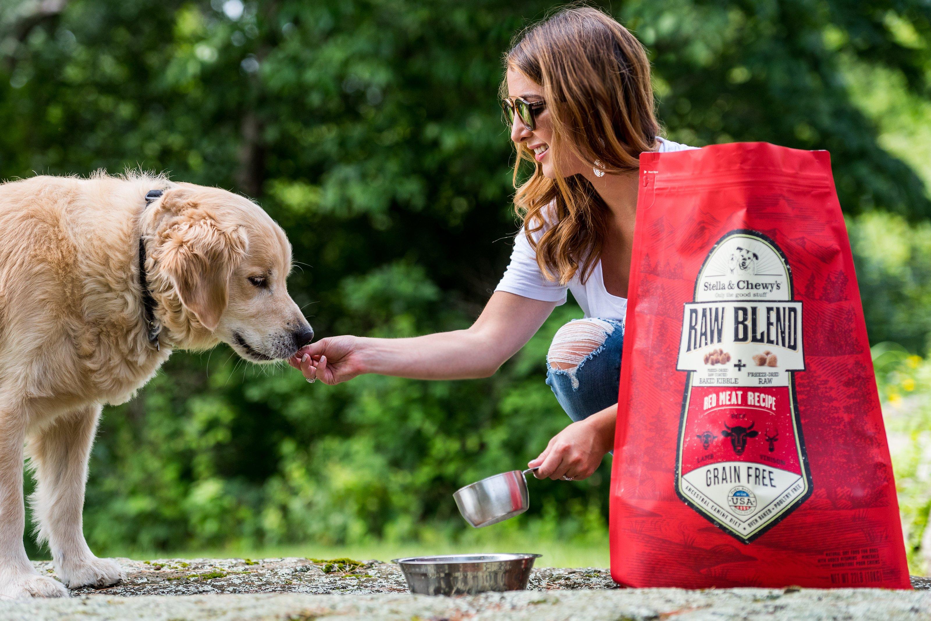 Jax for Stella & Chewy's: Getting a Dog 101