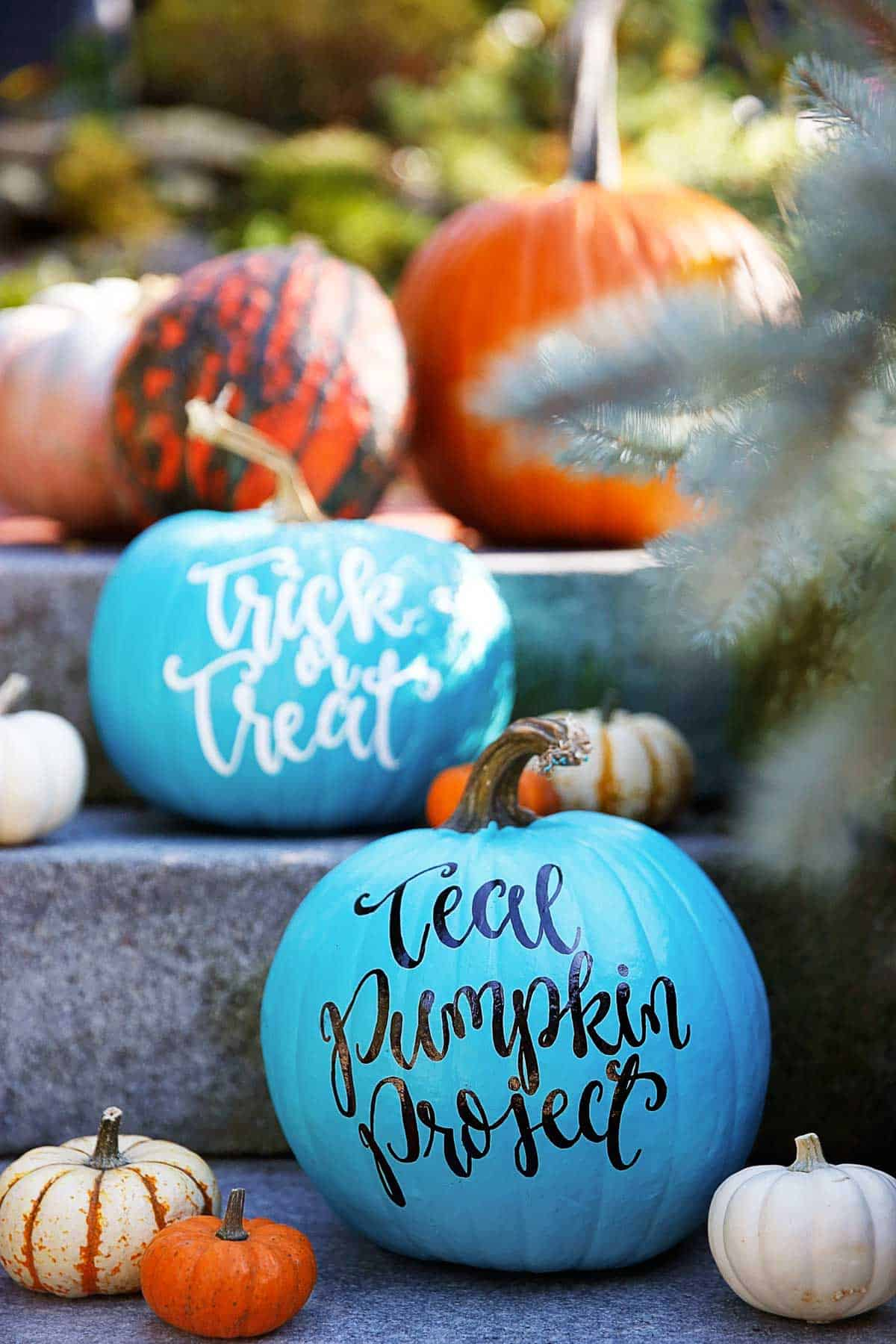 Teal Pumpkin Project: Everything You Need to Know! - Lexi\'s Clean ...