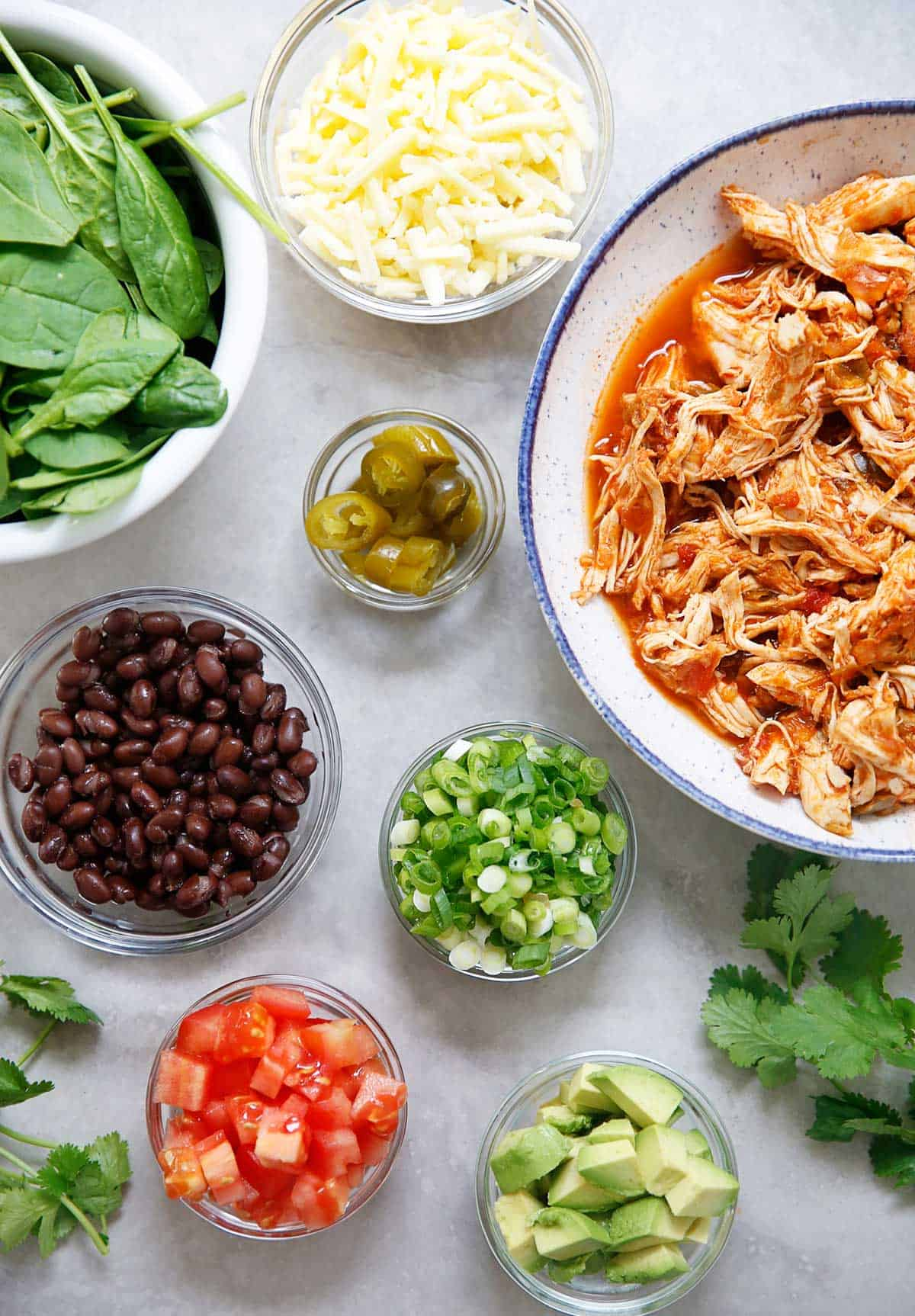 Instant Pot Shredded Salsa Chicken - Lexi's Clean Kitchen