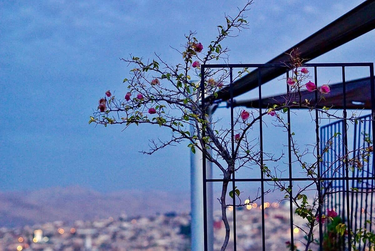 Beautiful night Skyline Fes Morocco
