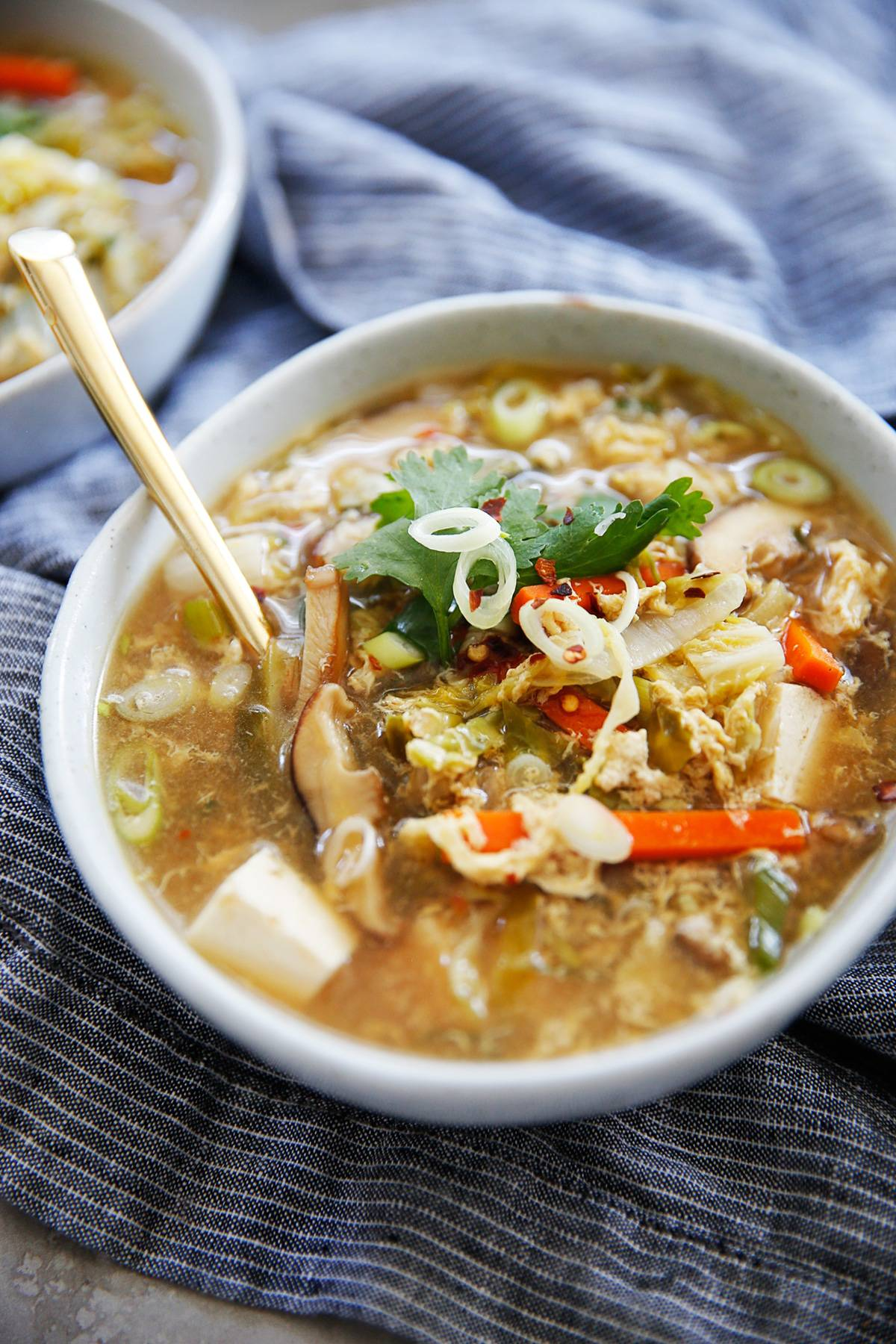 Close up shot of vegetarian hot and sour soup