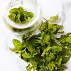Ways to Use Fresh Mint