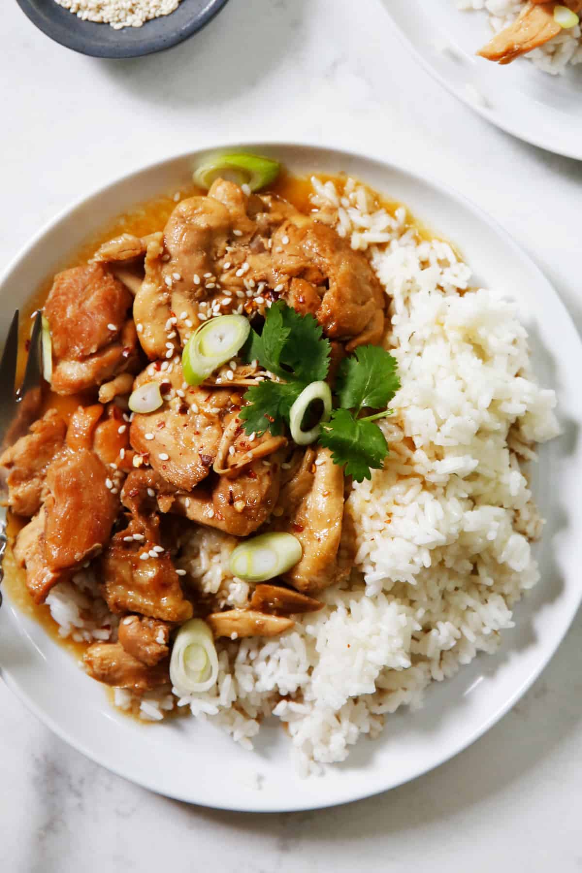 Chicken teriyaki recipe cooked in the instant pot