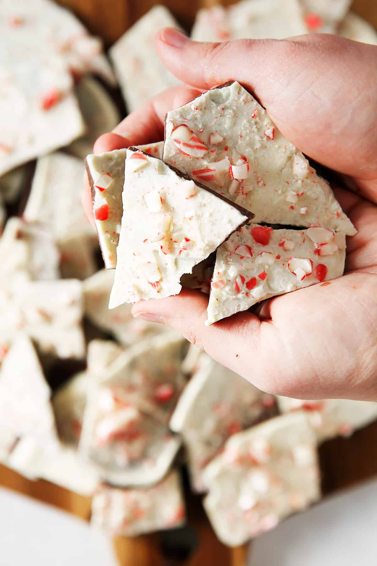 A handful of peppermint bark