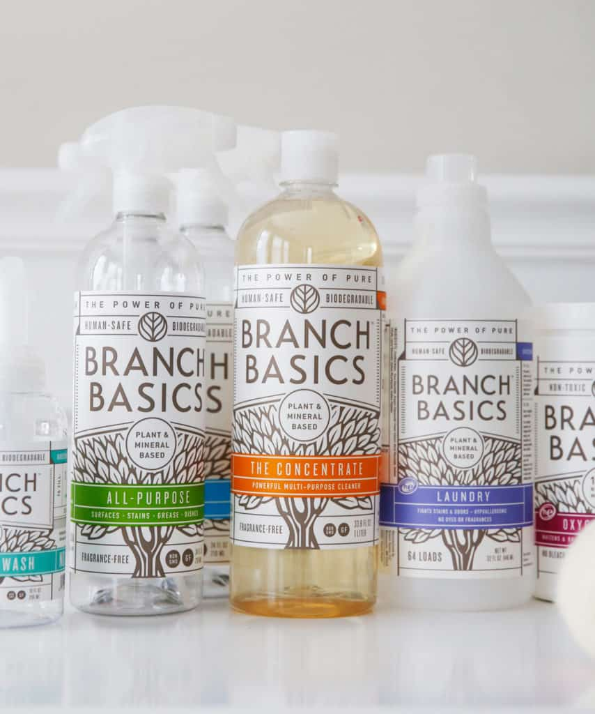 Branch Basics Starter kit