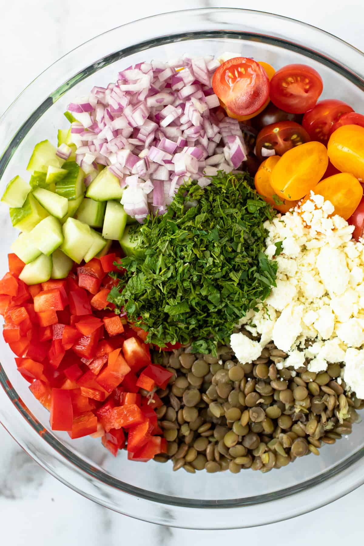 Lentil salad Ingredients in a Bowl