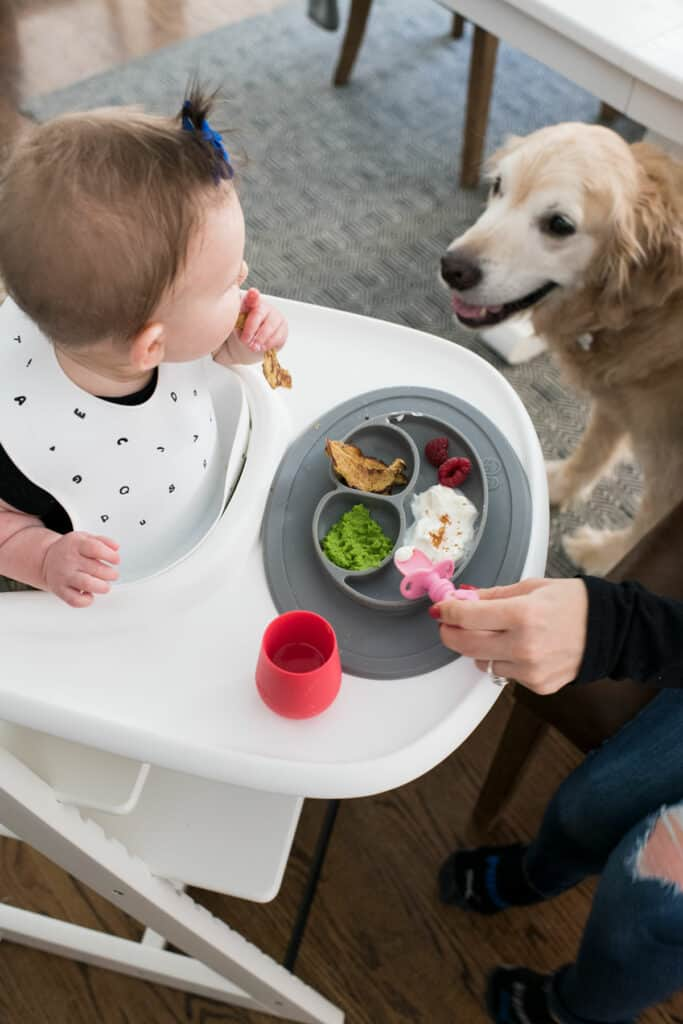 Starting Solids with Baby